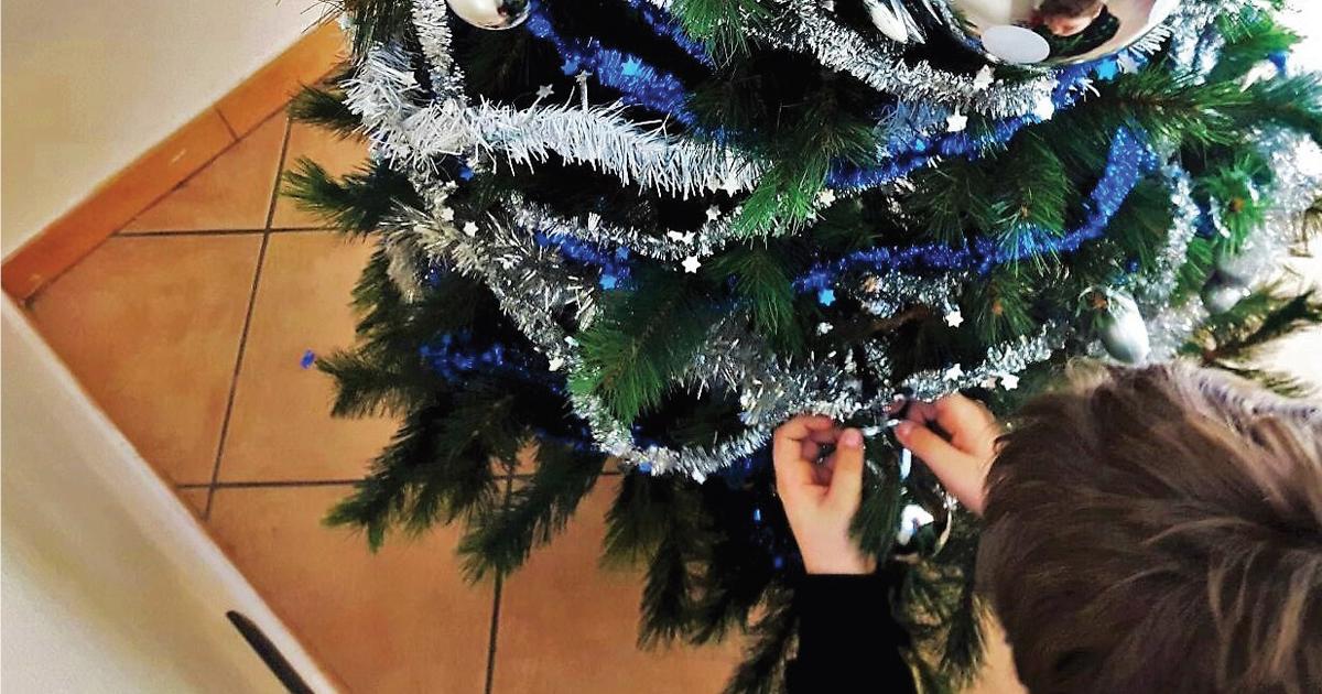 L'albero è pronto: un desiderio per Casa Base Avigliana! – Sostienici